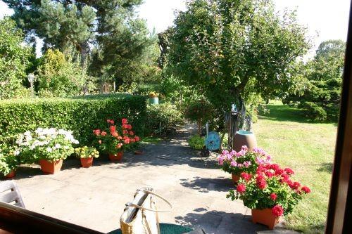 Fensterblick in den Gartenbereich