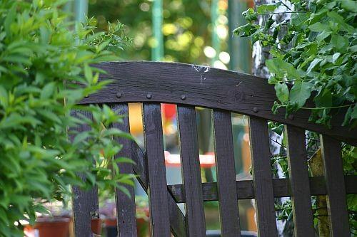 ... bis wir von einem Gartenfreund sein altes Tor bekamen, das er entsorgen wollte