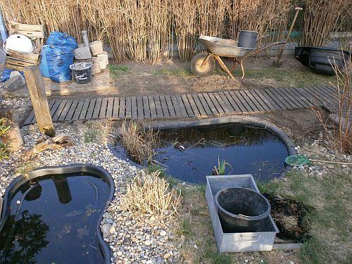 Erster Probeversuche der neuen Teichgestaltung
