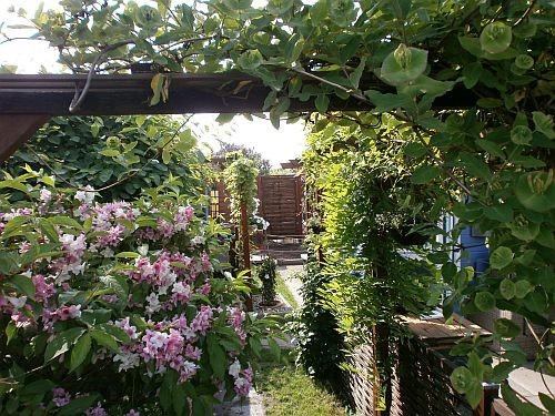 Die Sichtachse vom Garten zum Backstage Green