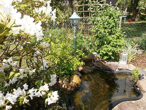 Jetzt steht die blaue Gartenlaterne am kleinen Teich