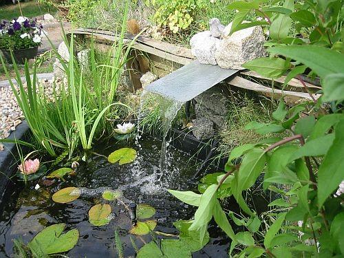 Der kleine Wasserfall bringt Sauerstoff in den Teich