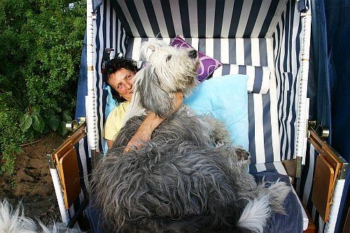 ... oder mit den Hunden ausgiebig kuscheln