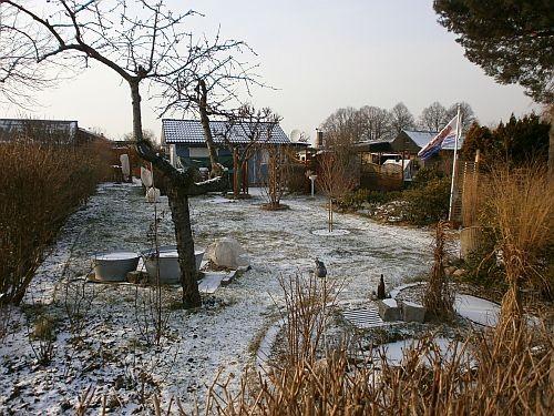 Der Garten im Februar 2012