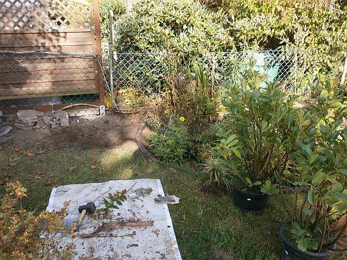 Vier Lorbeersträucher wurden als vordere Begrenzungshecke neu gepflanzt