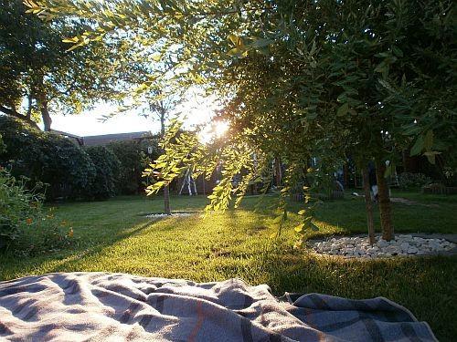 ... mit tollem idyllischen Blick in den Garten