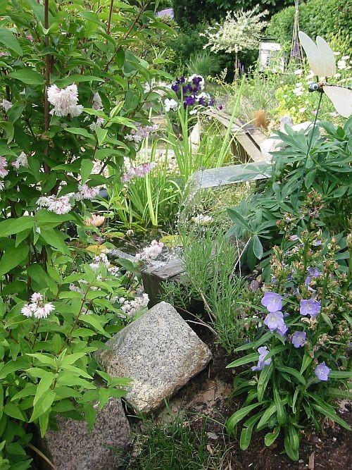 Eine Artenreiche Bepflanzung macht den Gartenteich zu einem wunderschönen Biotop