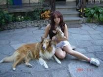 io Cleo e Nora la collie 2007