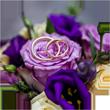 Hochzeit-Hochzeitsgeschenk