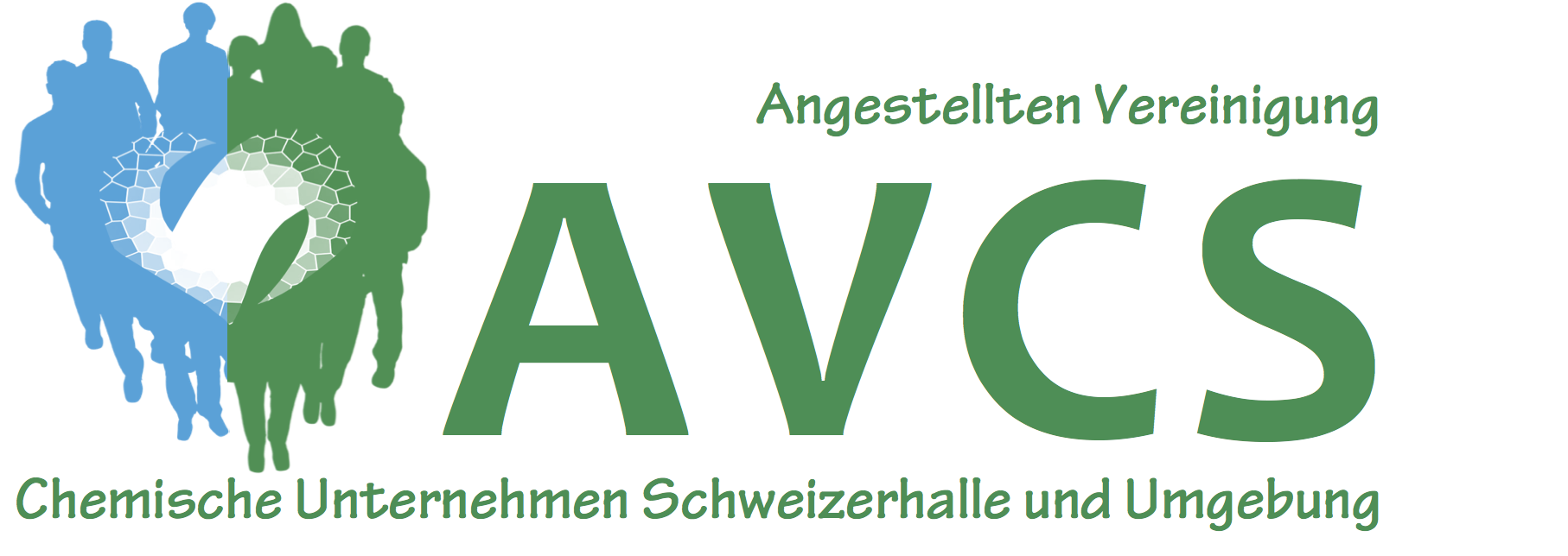 Logo der AVCS, Kunde seit über 15 Jahren, viele Texte und Prints, Webmaster Homepage