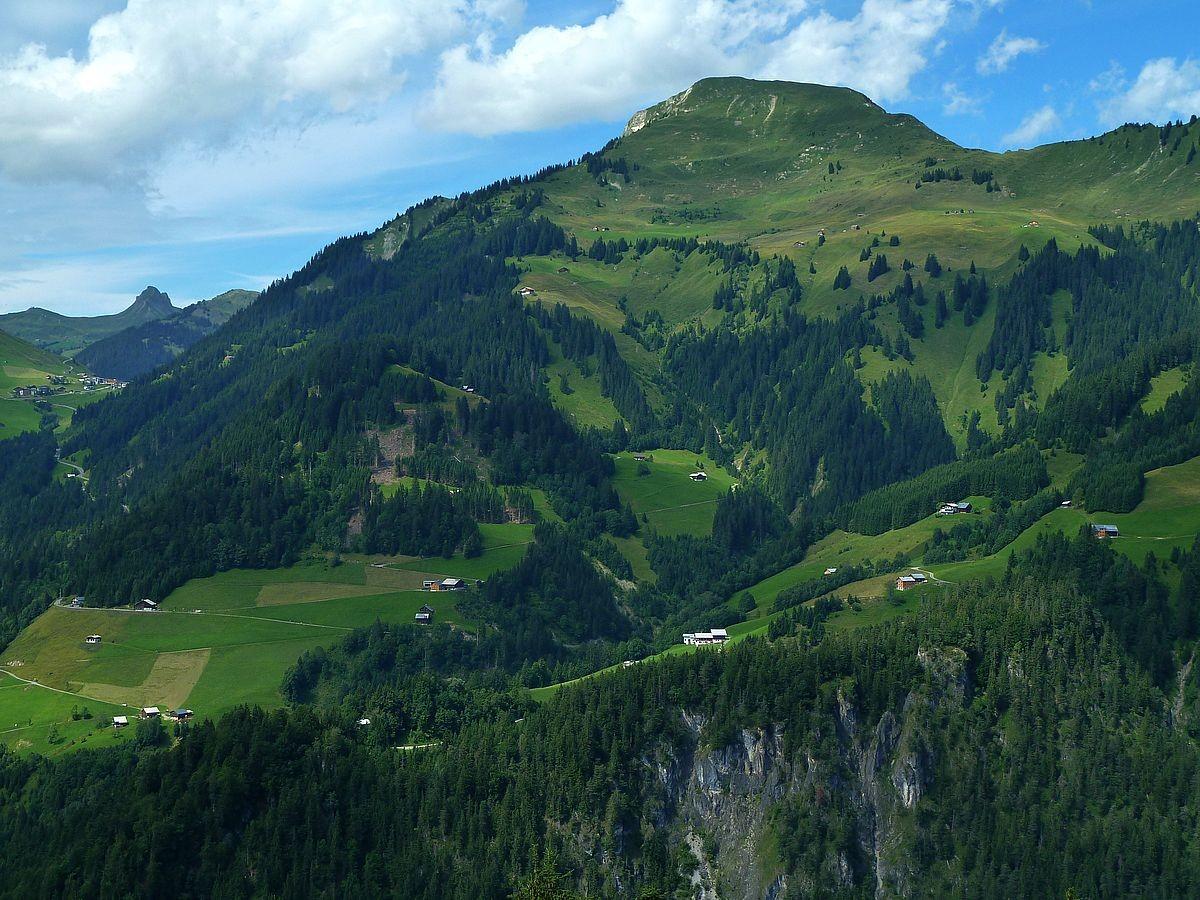 Das Zafernhorn. Darunter das Gebiet um den Seewaldsee, der durch Bäume verdeckt ist.