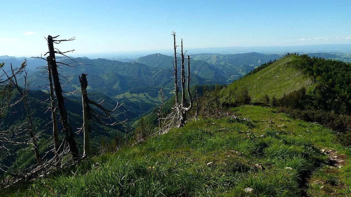 Sicht auf Reichraminger Berggebiet und Schieferstein. Am Horizont Höhenzüge des Böhmerwalds
