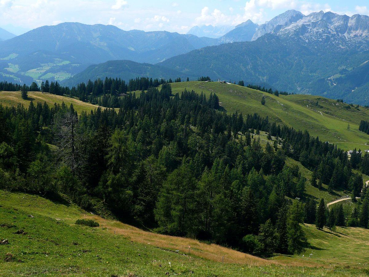 Blick von der Zwieselamlmhöhe auf das Tennegebirge im Westen
