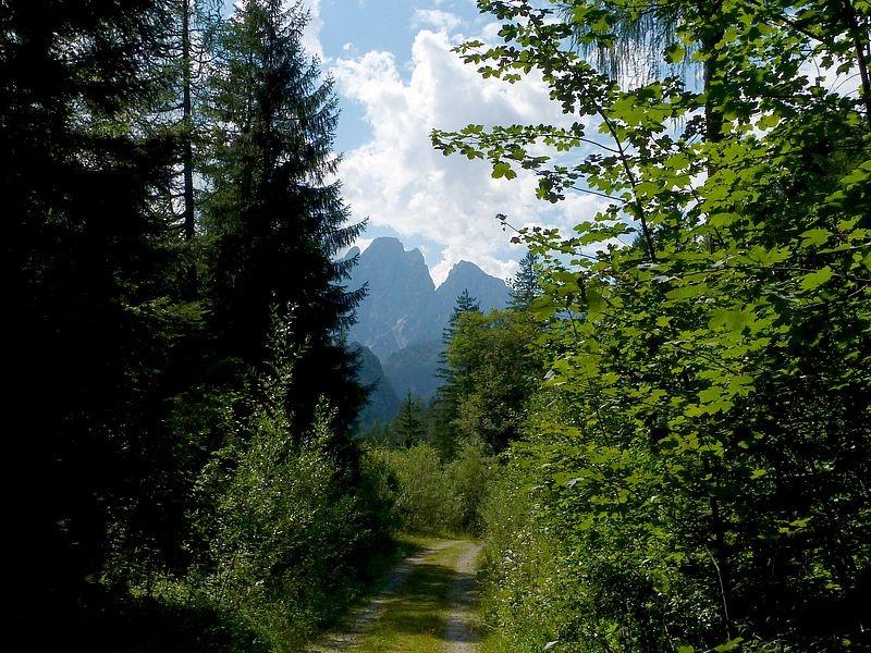 Über dem Rauchbodenweg Gesäuseberge des Admonter Gesäusebereichs