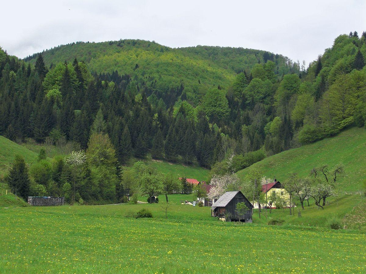 In der Breitenau bei Molln