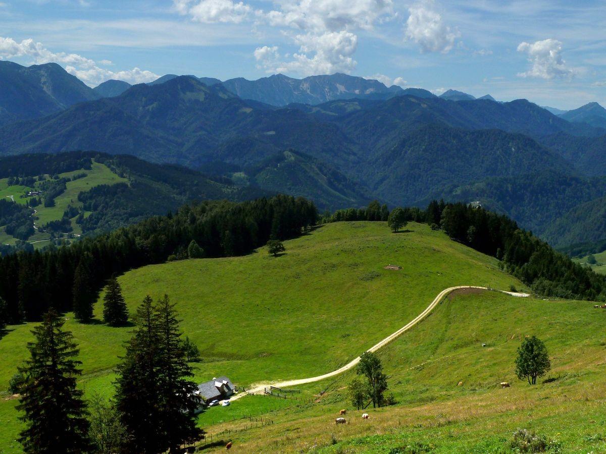 Gschwendtalm und Nationalparkgebiet zwischen Brunnbach und Hoher Nock.