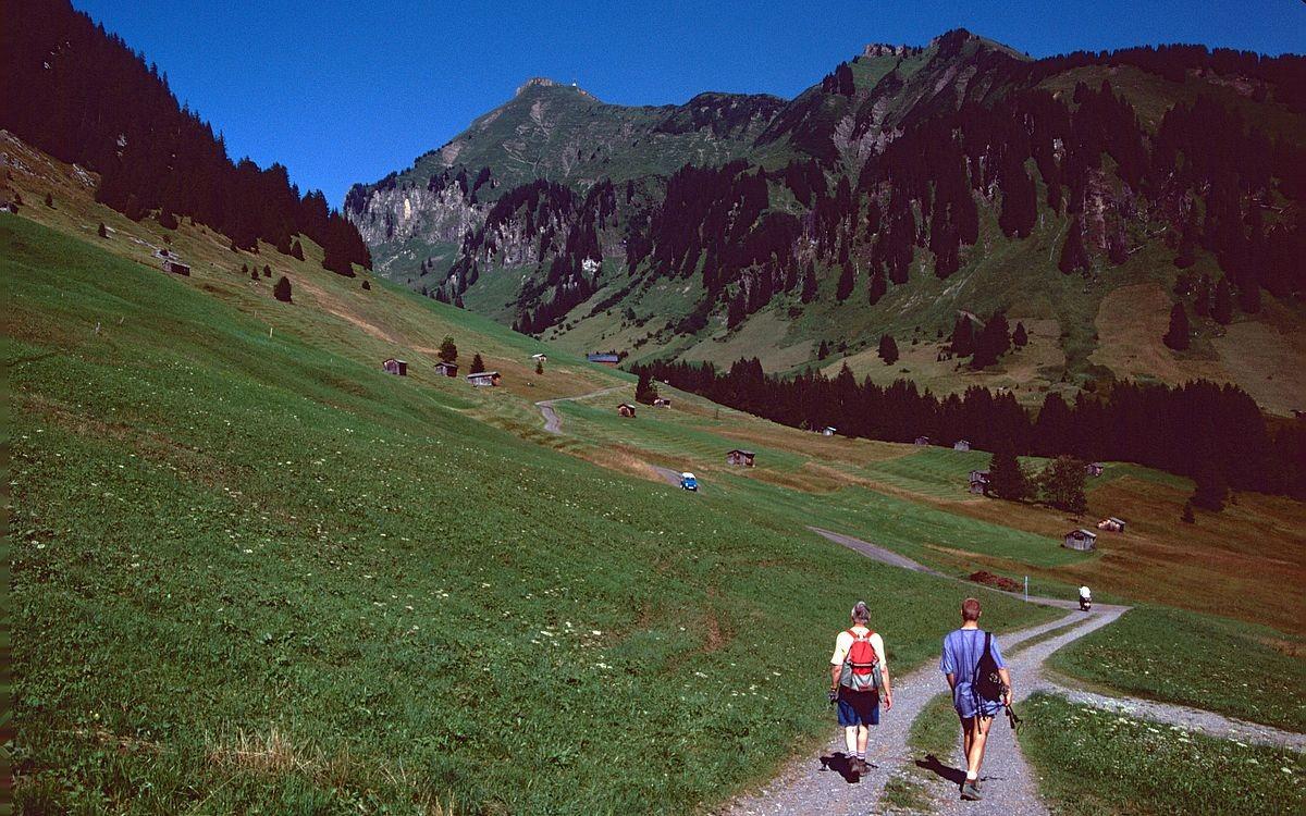 Wanderweg Au-Rehmen Richtung Satteleggalpe. Im Hintergrund Diedamskopf