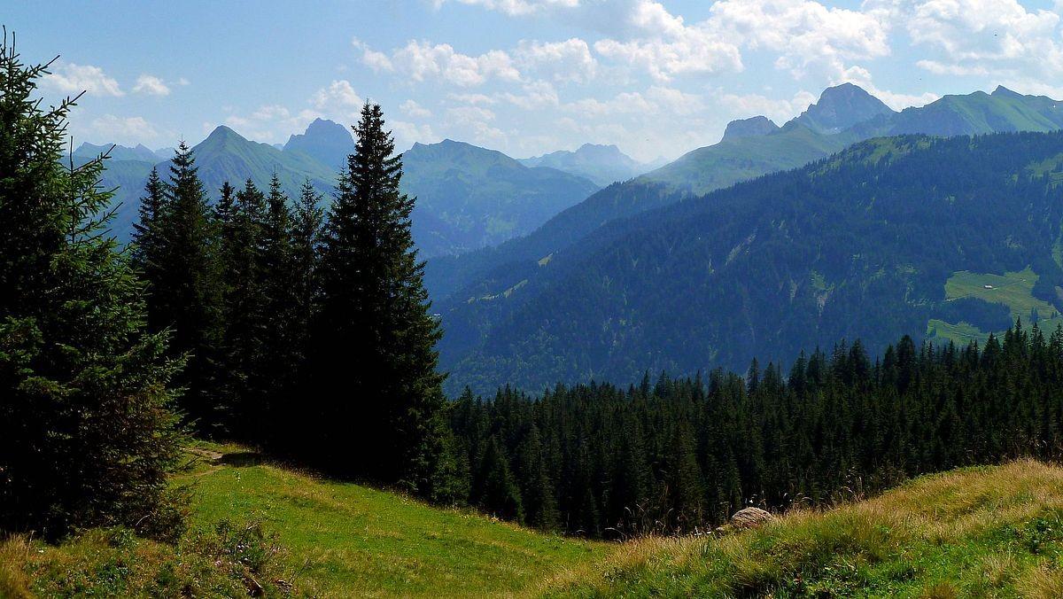 Hinterer Bregenzerwald mit Widderstein, Hintere Üntschenspitze und Hochkünzelspitze vom Zufahrtsträßchen zum Alpengasthof Edelweiß