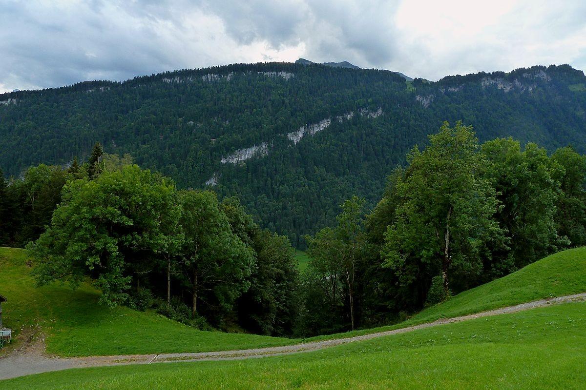 Blick auf die charakteristischen Fluhbänder im vorderen Bregenzerwald zwischen Bersbuch und Reuthe