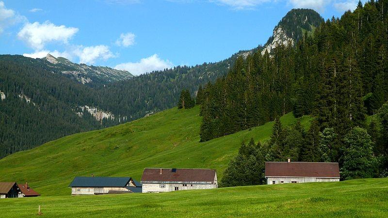 Schönenbach vom Rückweg zum Parkplatz