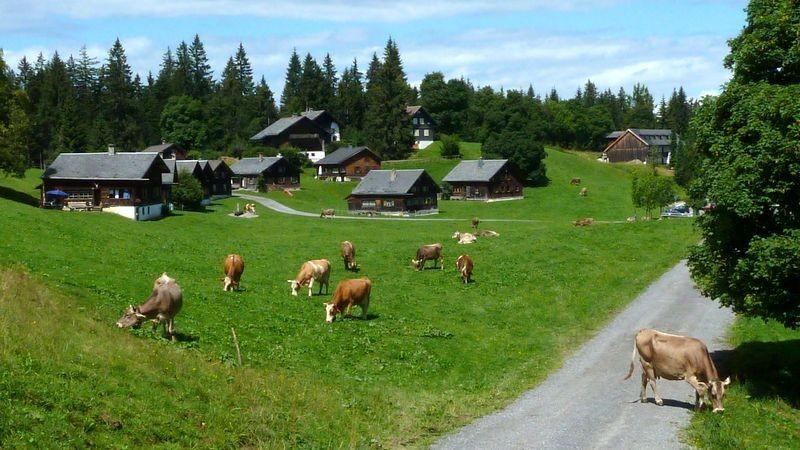 Alpsiedlung in der Nähe des Ausgangsortes am Bödele.