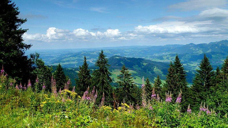 Nördlicher Bregenzerwald und Westallgäuer Voralpenland zwischen Scheidegg und Oberstaufener Gegend