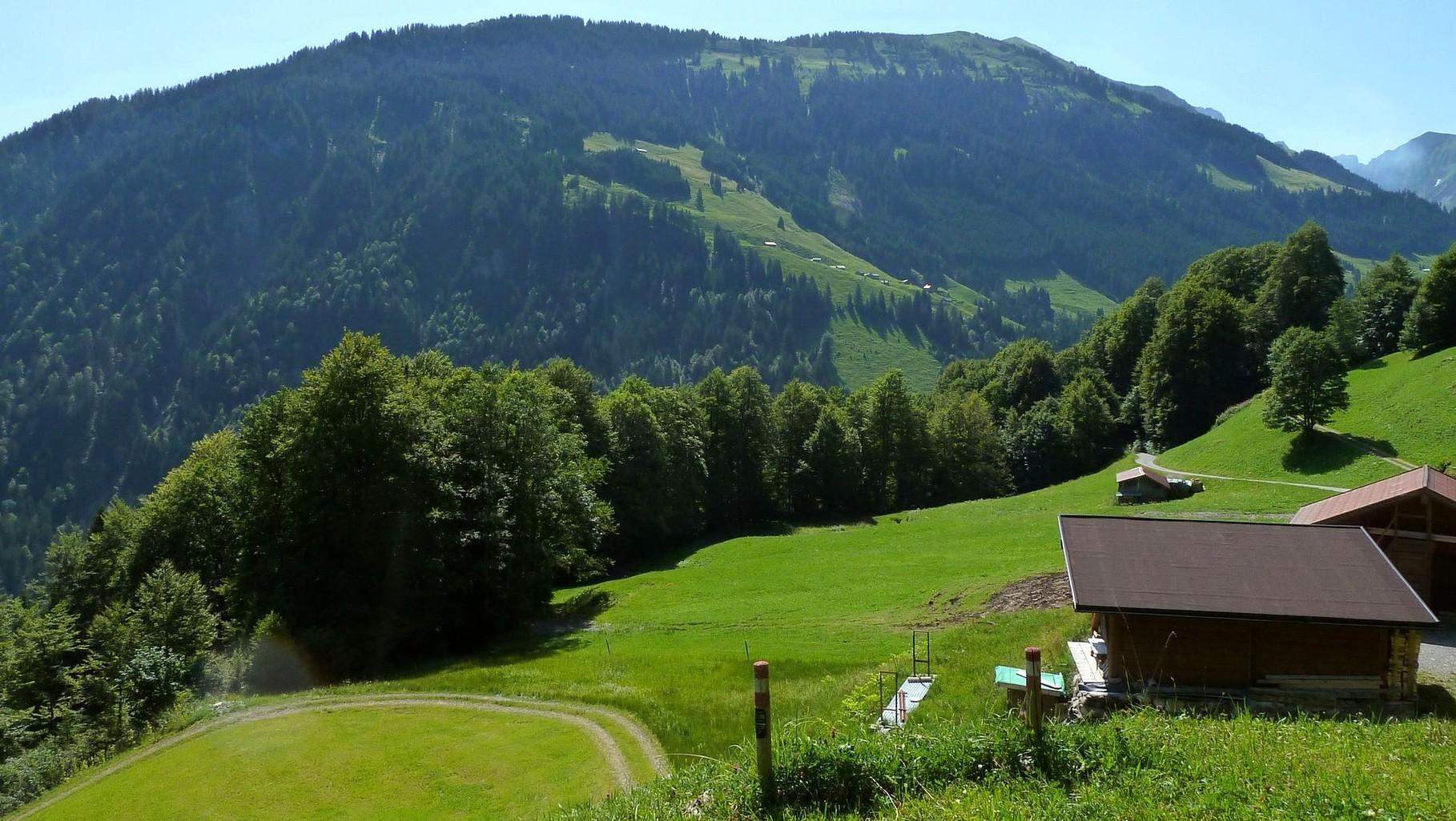 Rechts das Zufahrtssträßchen zum Alpengasthopf Edelweiß. Blick auf  Lug mit der Alpsiedlung Argen Vorsäß