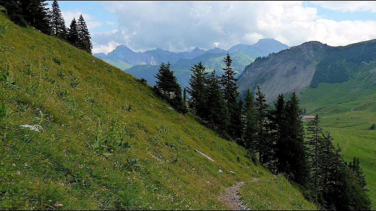 Die Zitterklapfengruppe vom Abstiegsweg zur Wurzachalpe