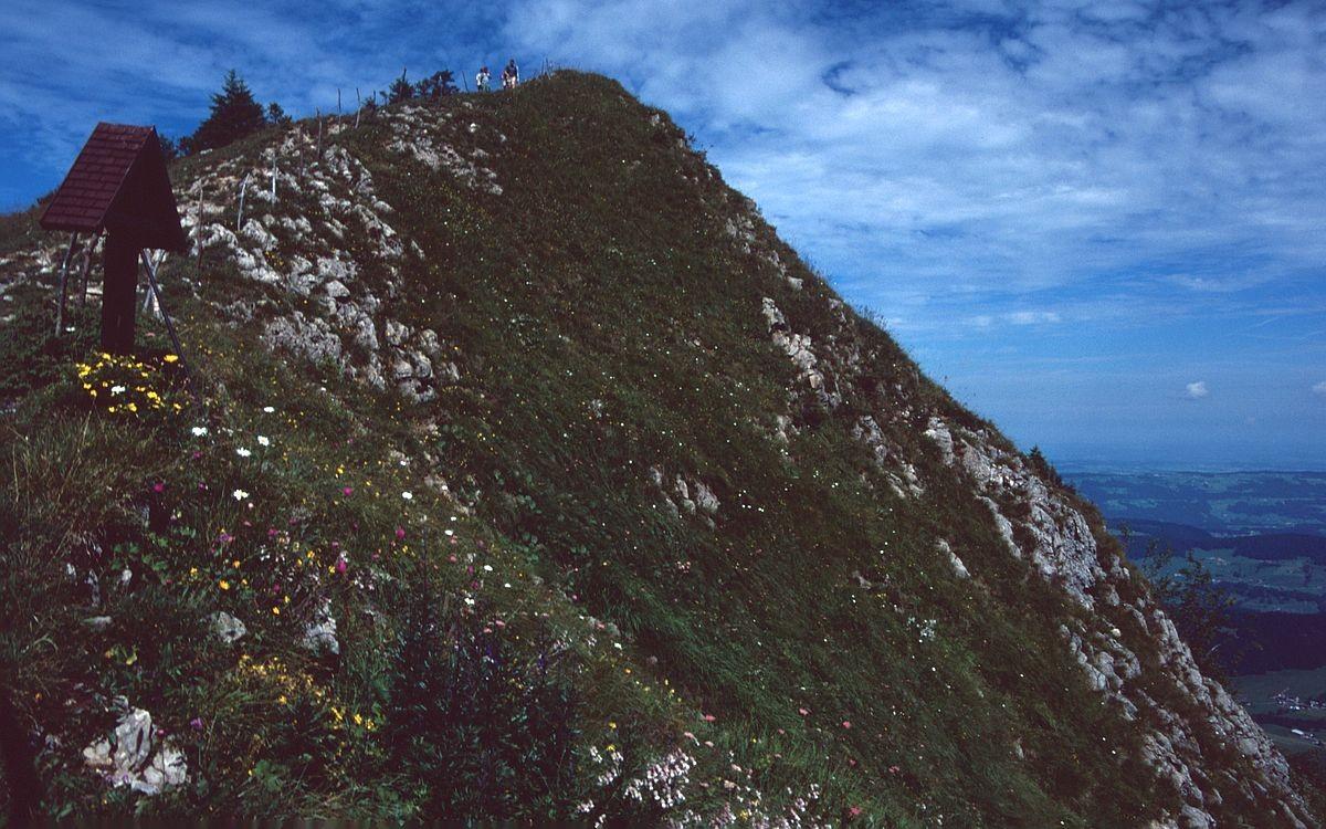 Wanderung im Bereich Niedere-Tristenkopf