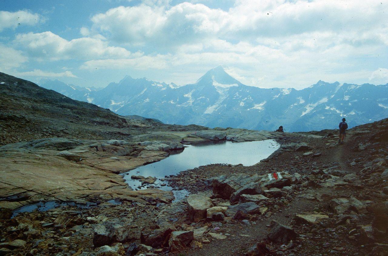 Am Lötschenpass: Sicht auf das 3934 m hohe Bietschhorn