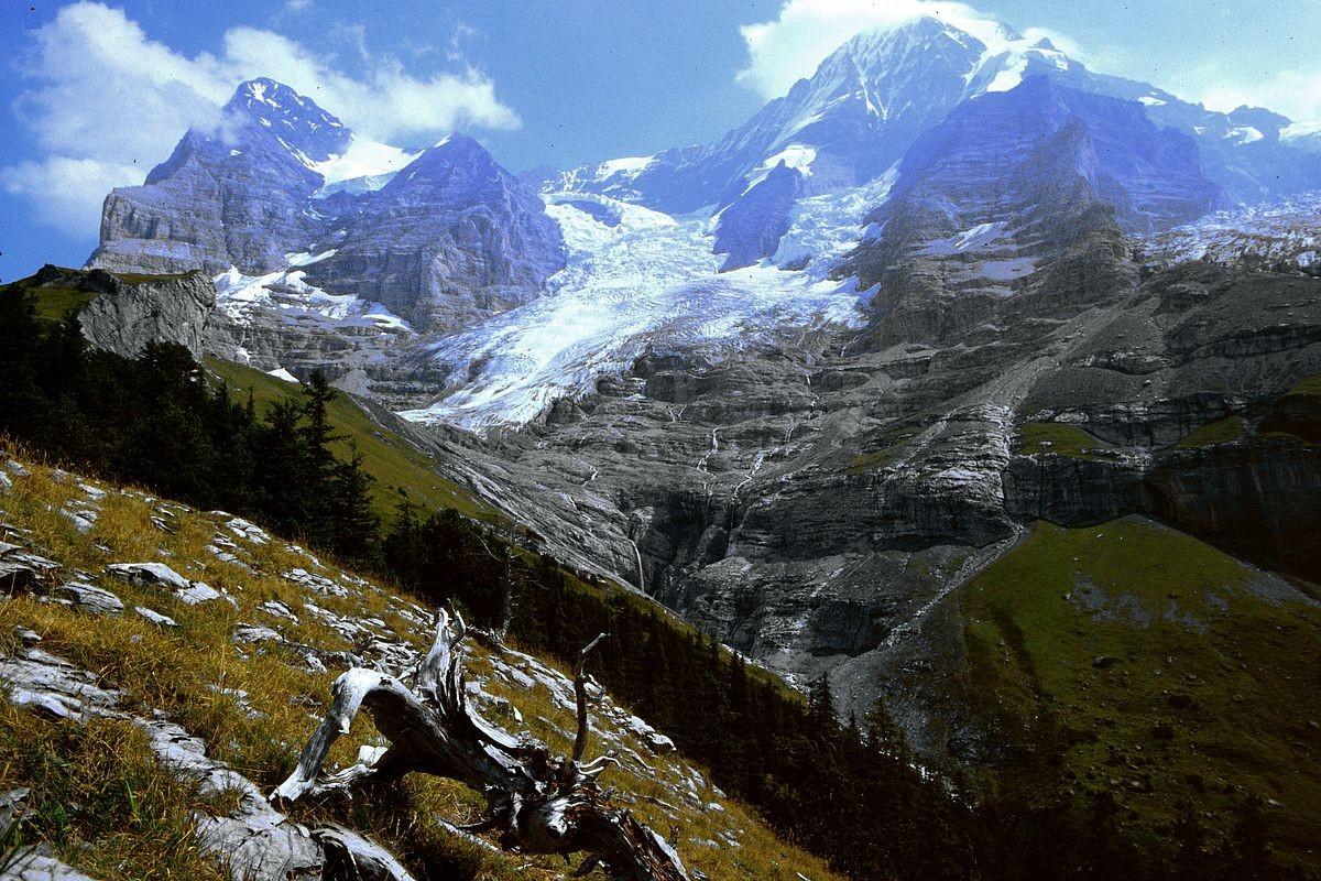 Eiger-Westflanke, Eigergletscher und Mönch vom Abstieg zur Biglenalp