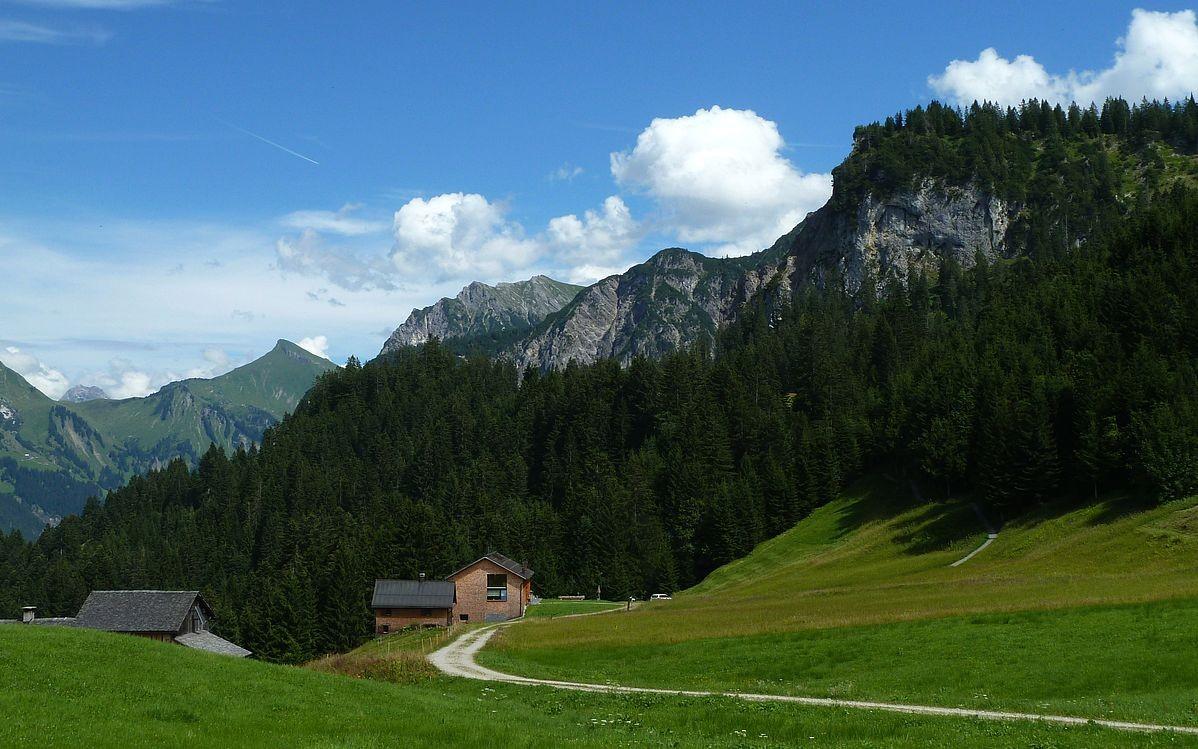 Bei Vordersteinbild Vorsäß. Blick zurück zum Themenweg Klangraum Stein, der rechts in den Wald führt.