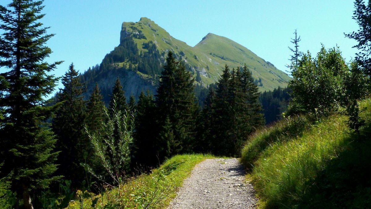 Das Kanisfluhmassiv vom Weg Roßestelle - Kanisalpe. Linker Gipfel Hoher Stoß, rechter Gipfel die 2044 m hohe Holenke. Dazwischen der Hählesattel.