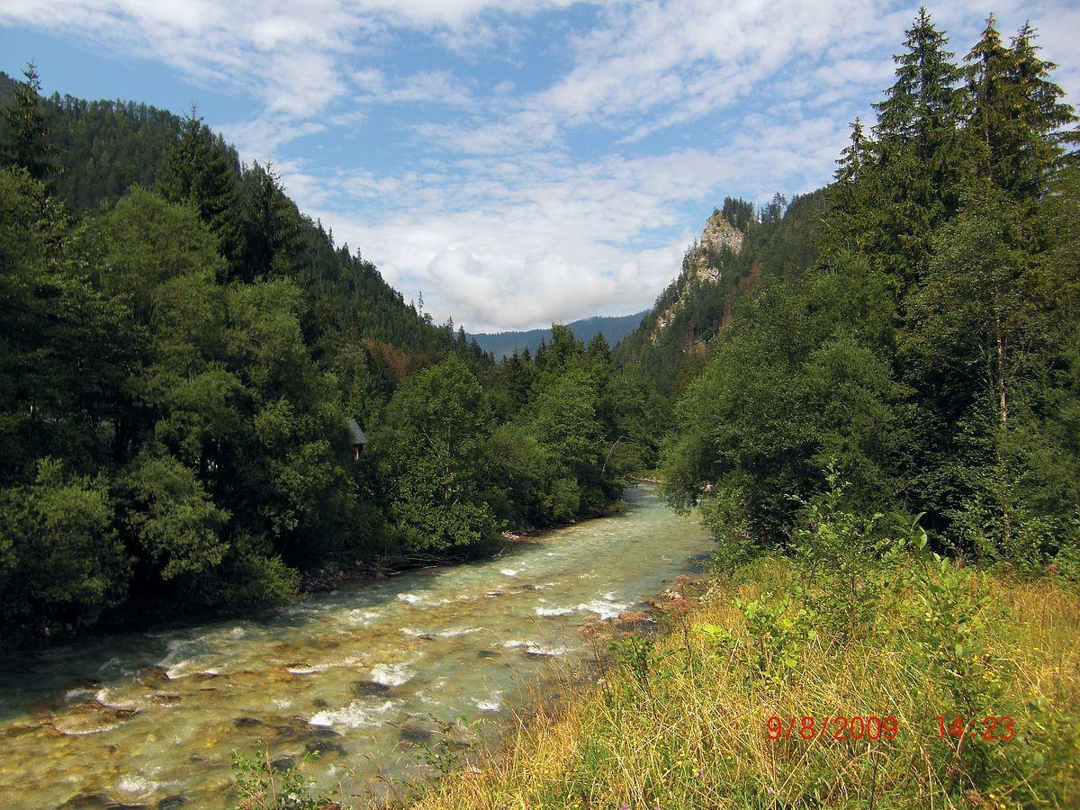 Die Steyr flussabwärts nördlich von Hinterstoder