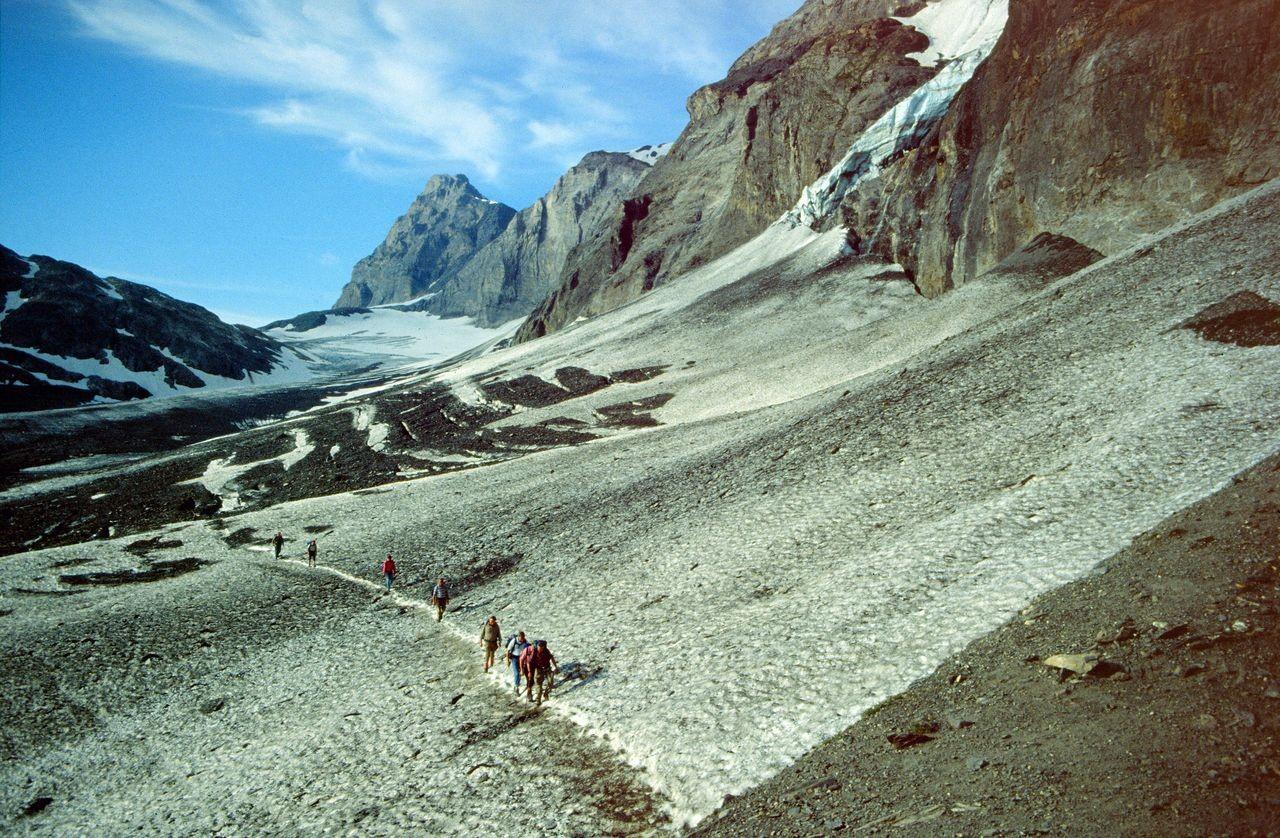 Blick über den Lötschengletscher zur Passhöhe.