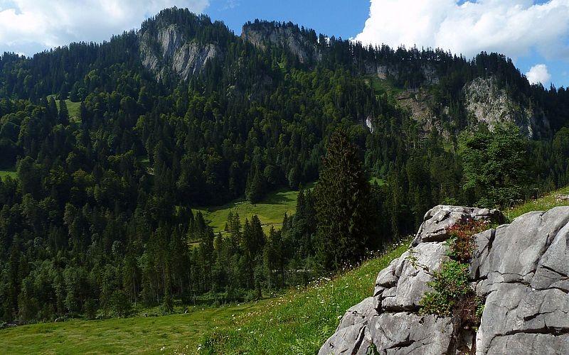 Unterhalb des Ausläufers der Sienspitze führt der Weg nahc links Richtumng Schönenbach zurück.