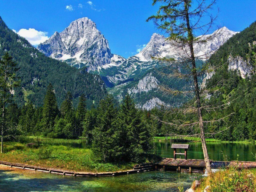 Harmonisch fügt sich der einst künstlich angelegte Schiederweiher mit dem Holzwehr ins Landschaftsbild.