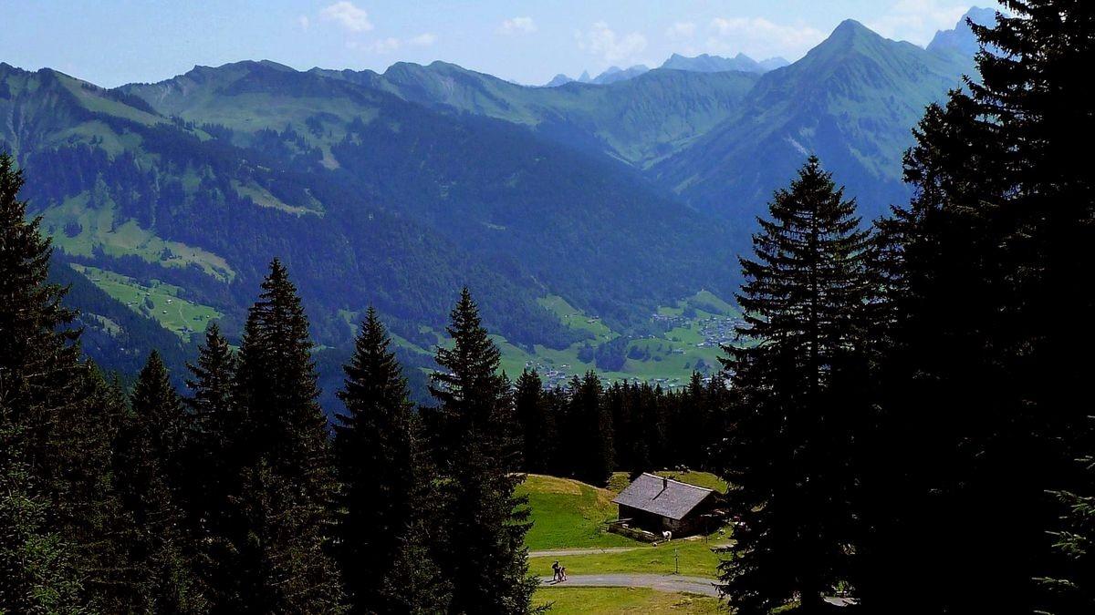 Anstieg zur Wurzachalpe über die Öberlealpe. Sicht auf hinteren Bregenzerwald bis zu den Allgäuer Alpen mit der Trettachspitze