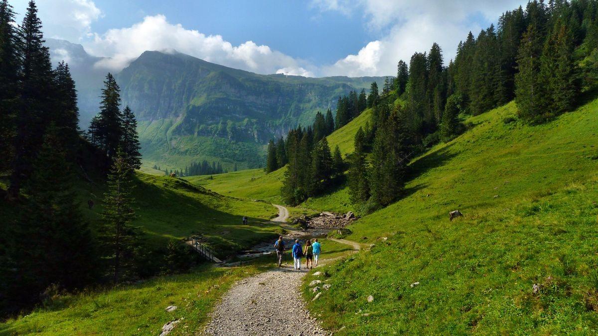 Blick vom Rastplatz über den Steg über den Alpbach ins Gebiet der Kanisalpe