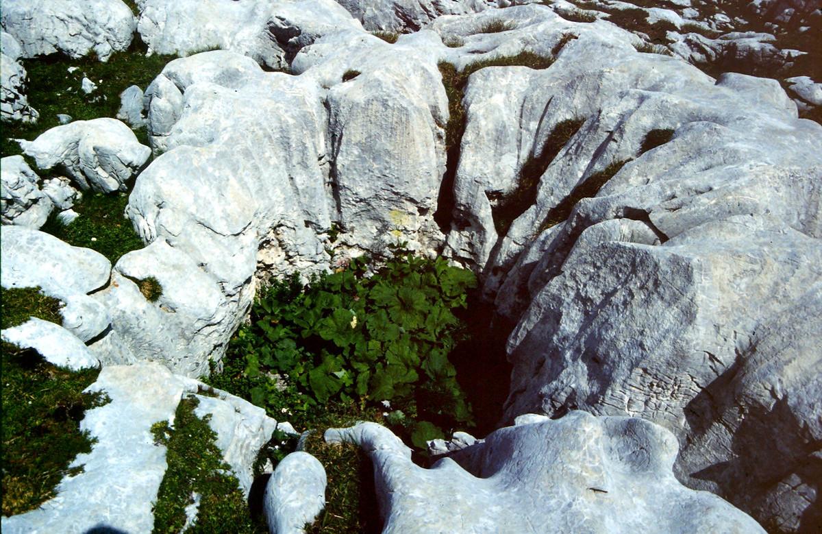 Kleine Doline am Aufstieg zur Wyssi Flue