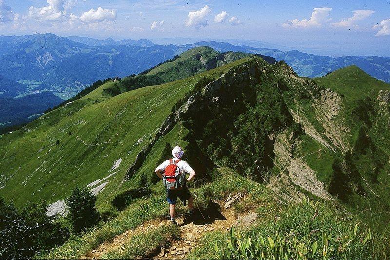 Blick zum Tristenkopf. Dahinter Niedere und Bodensee (rechts oben im Dunst) vom Steig auf die Winterstaude