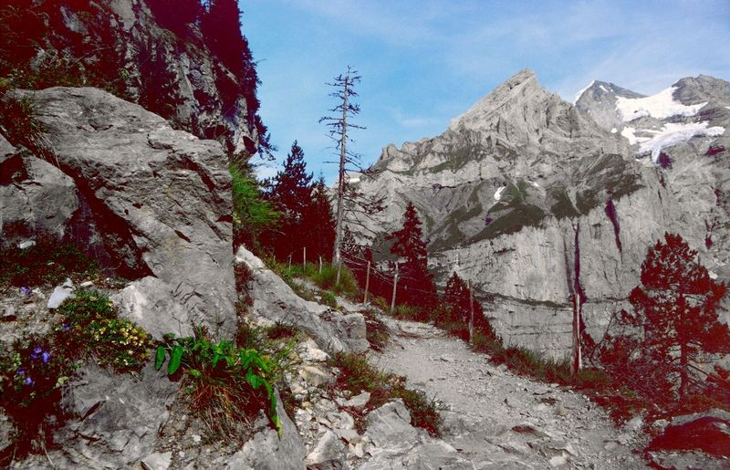 Am Weg Unterbärgli - Oeschinensee