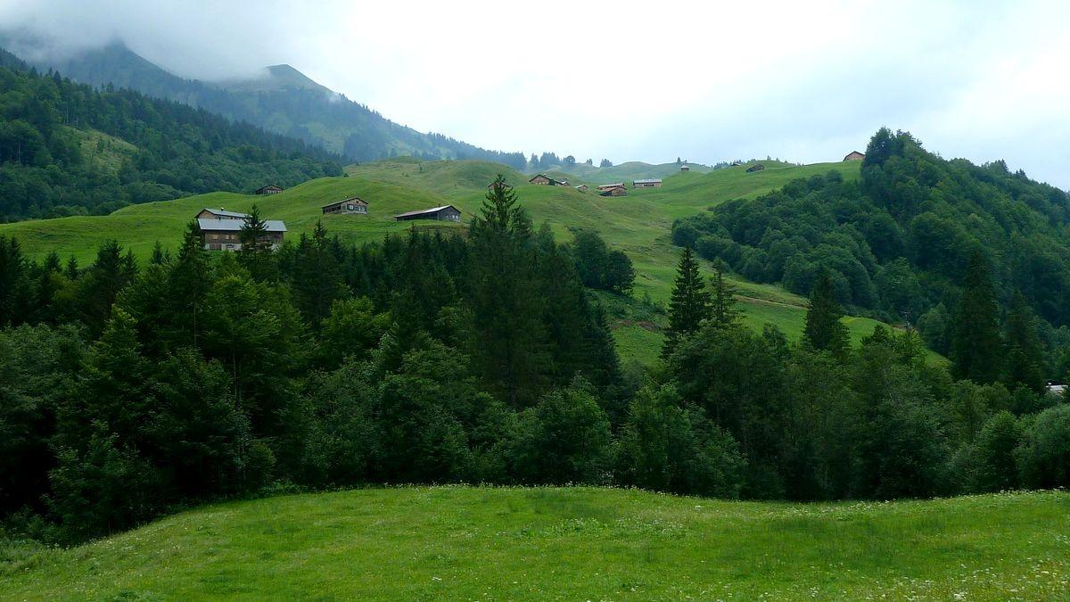 Die Alpsiedlung Schalzbach Vorsäß und das Gebiet des toblermannkopfs vom F. M. Felderweg