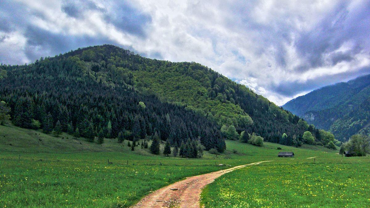 Auf einer Wanderung in der Breitenau bei Molln auf dem Weg zum Klausgraben