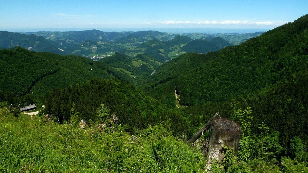 Blick Richtung Sonntagberg und Böhmerwald