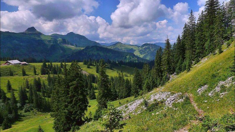 Aufstieg bei einer anderen Tour auf die Holenke im Gebiet der Wurzachalpe