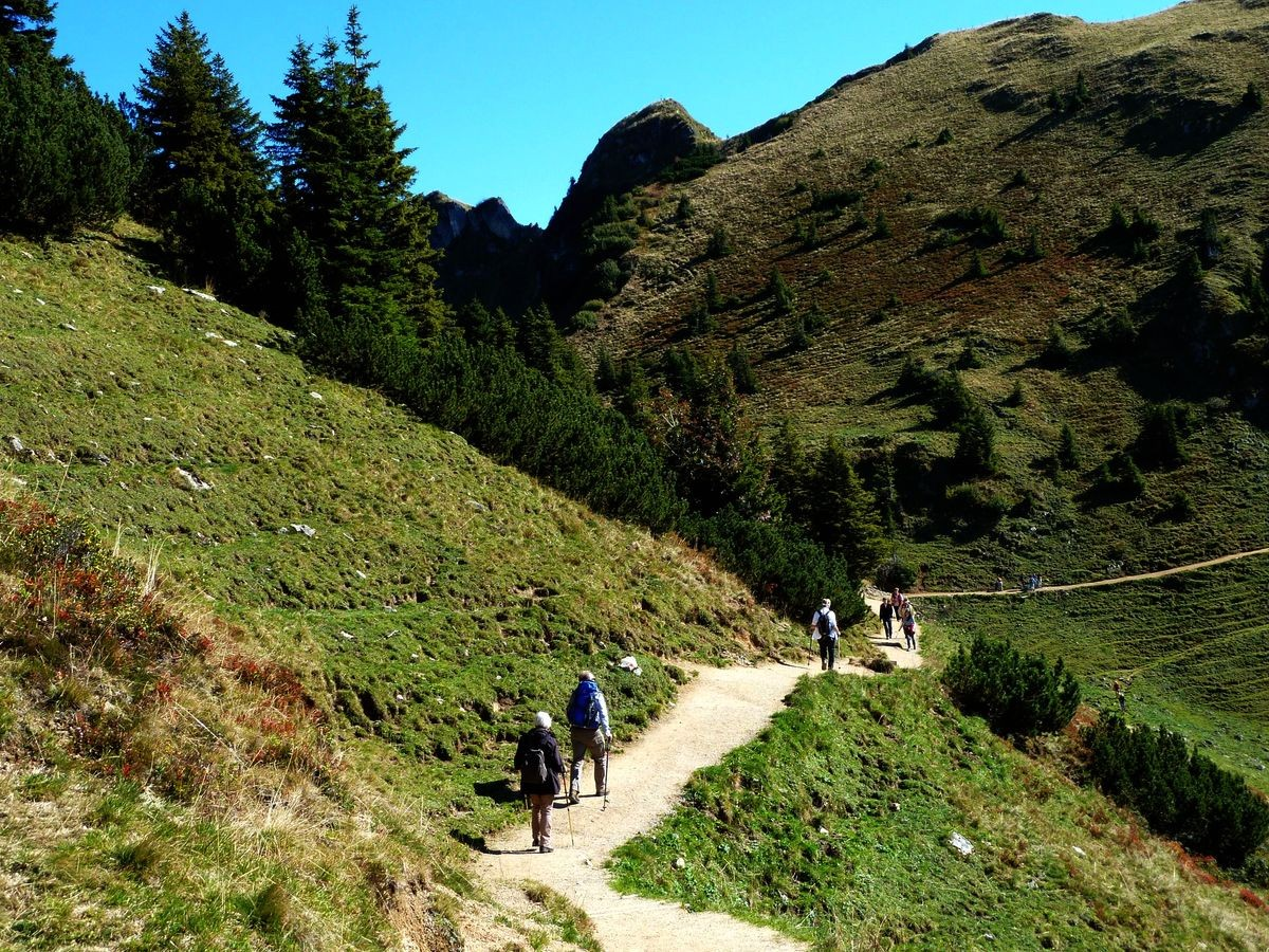 Rotwand (Mitte hinten) vom Wanderweg