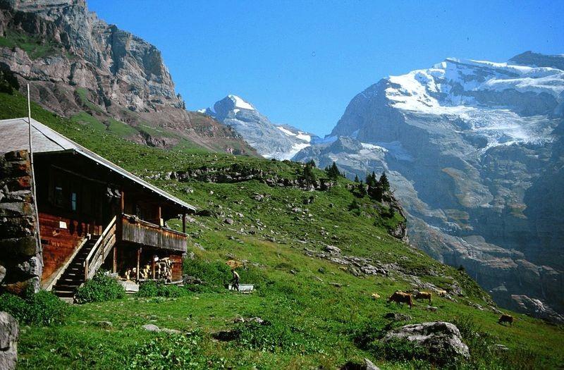 Alp bei Oberbärgli Richtung Obere Fründenschnur