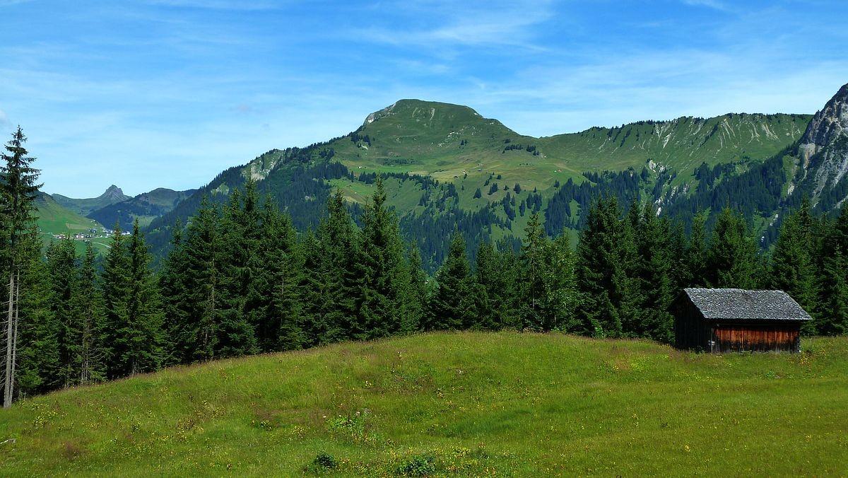 Zafernhorn vom Wanderweg Stein - Vordersteinbild