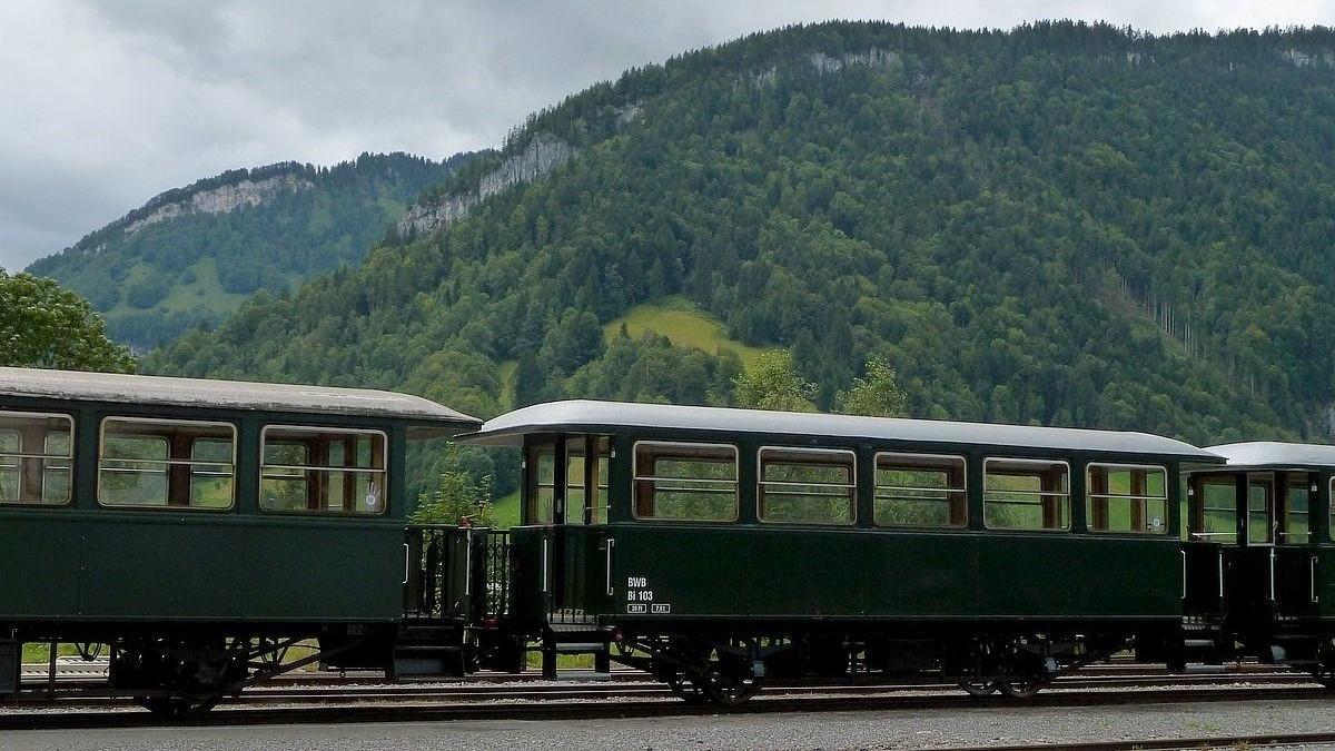 Personenwagen der Bregenzerwaldbahn. Die Lokomotiven waren an diesem Tag leider im Lokschuppen.